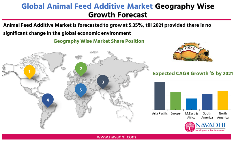 Global Animal Feed Additive Market by Geography